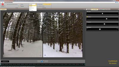 Screenshot ProDRENALIN Wald im Winter
