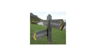 Which product is right for you?