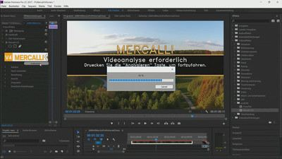 Screenshot Mercalli V4 Plug In for Adobe