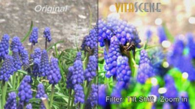 proDAD VitaScene V3 - professional transitions and filter effects